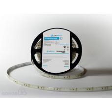 Светодиодная лента LP IP65 3528/120 LED (теплый белый, standart, 24)