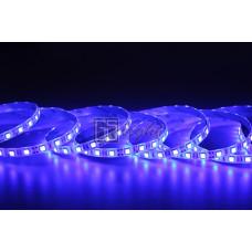 Герметичная светодиодная лента SMD 5050 60LED/m IP65 12V Blue LUX GSlight
